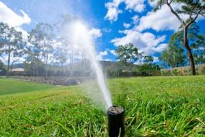 sprinkle-spring-maintenance