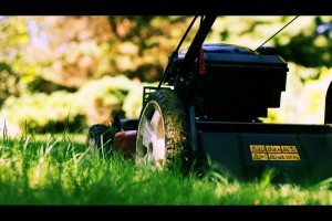 Lawn Maintenance: Lawn Mowing 101