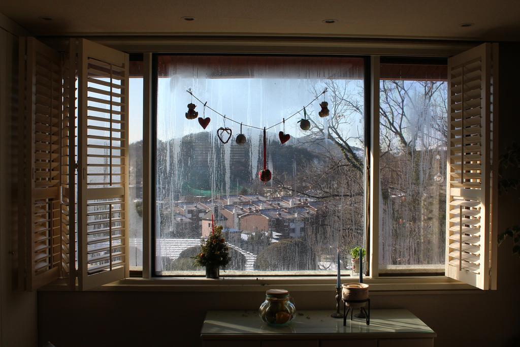 Winter outside my window
