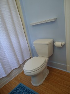 There are many cleaning solution in order to keep our toilet clean