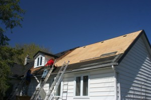Check your roof for any damage and repair it immediately.
