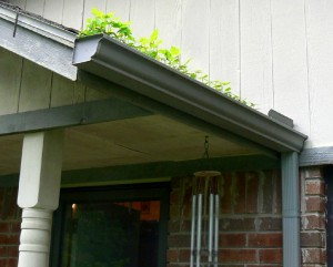 Have time to check and clean your gutters.